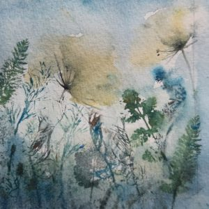 Cow Parsley & Ferns – Greetings Card